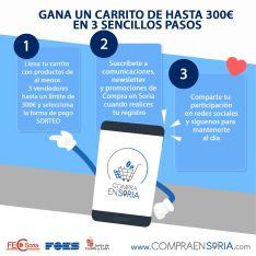Foto 3 - La tienda online 'Compra en Soria' inicia su andadura con el sorteo de un carrito de productos valorado en 300 €