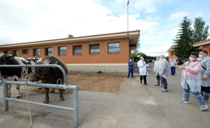 Imagen de la visita institucional al Censyra este lunes. /Jta.