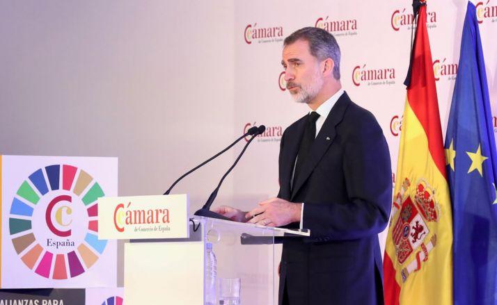 S.M. el Rey, durante su intervención en la sesión plenaria. /CCS
