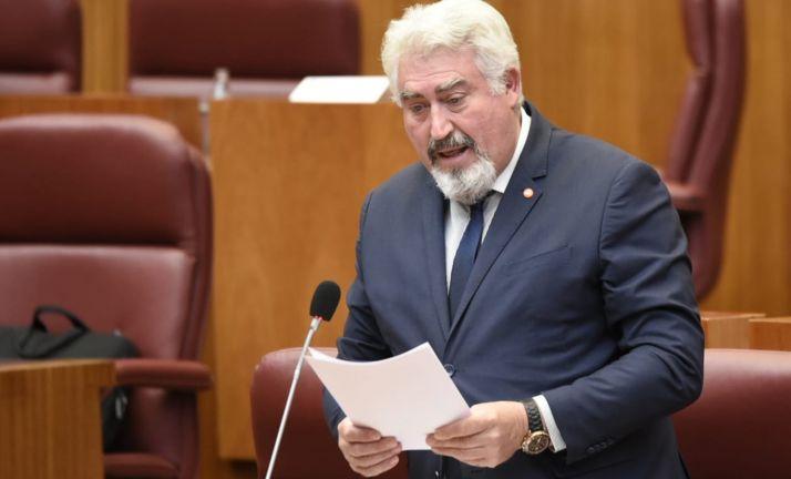 José Ignacio Delgado, en su intervención parlamentaria hoy. /Cs
