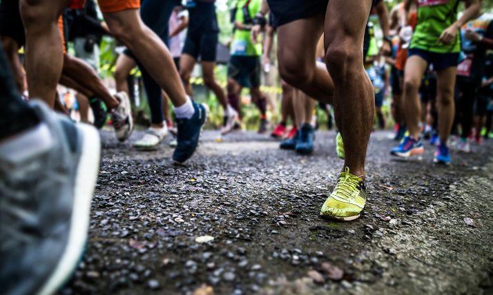 Foto 1 - El pescado en la semana previa a una maratón reduce el daño muscular y el estrés cardiaco, según un estudio del Campus