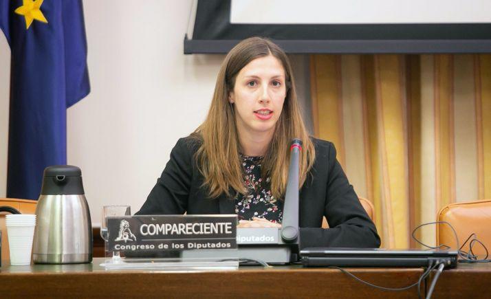 Sara Bianchi, de la SSPA, en su comparecencia en el Congreso de los Diputados. /SSPA