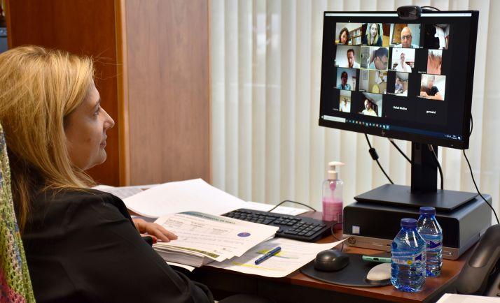 Yolanda de Gregorio, en la videoconferencia de este lunes. /Jta.