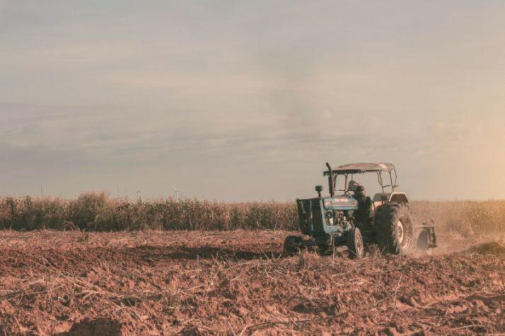 Foto 1 - 673.000 euros en ayudas para impulsar el cooperativismo, el emprendimiento y el autoempleo femenino en el régimen agrario
