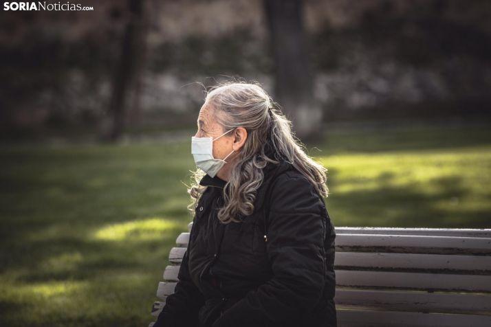 Una soriana descansa de un paseo durante el estado de alarma. /Viksar Fotografía