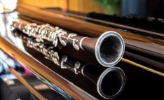 El clarinete protagoniza el inicio del ciclo.