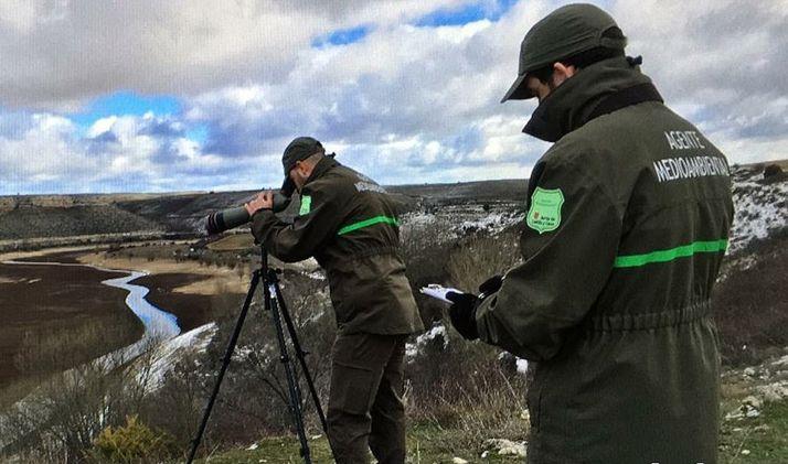 Dos agentes medioambientales de la Junta de Castilla y León.