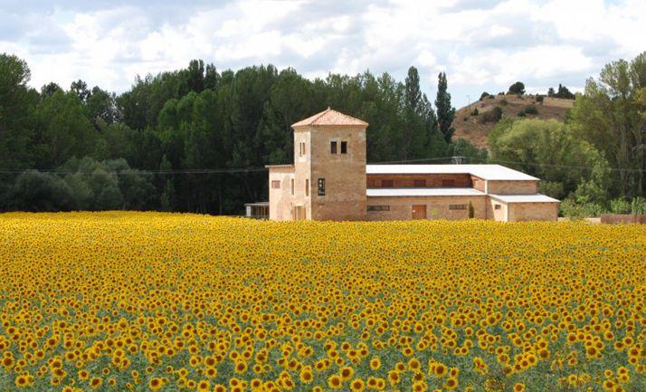Casa del Parque del Sabinar, en Muriel de la Fuente. /PN