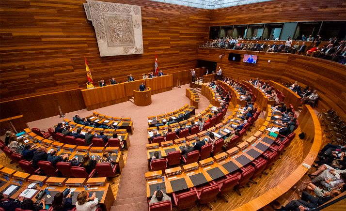 Una imagen de las Cortes regionales.