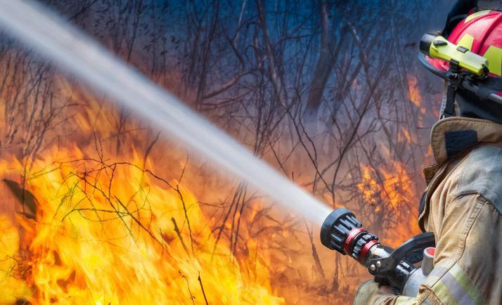 Un bombero sofoca un incendio forestal.
