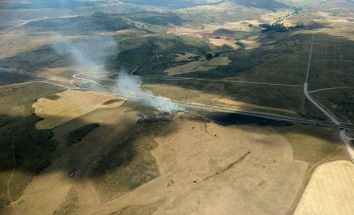 Arden 3,4 hectáreas de pasto en Medinaceli