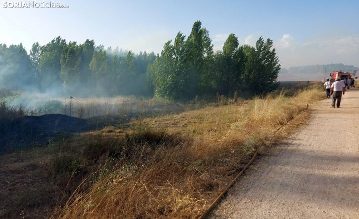 Sofocado el incendio de Matamala