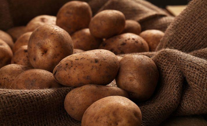 Foto 1 - Nace la Interprofesional de la patata de CyL, única asociación de este tipo en toda España