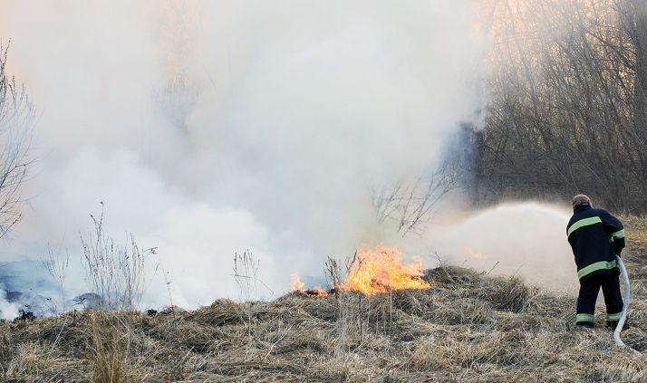 Labores de apagado de un incendio forestal en una imagen de archivo.