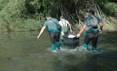 Agentes del SEPRONA durante la operación María-island. /GC