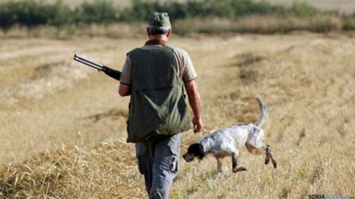 Un cazador y su perro en un campo soriano.