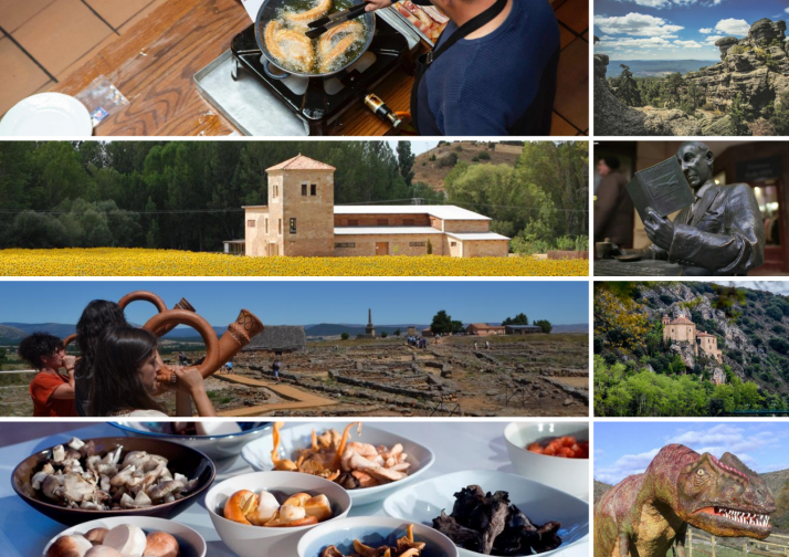 Turismo en Soria (provincia) Historia, naturaleza, gastronomía...