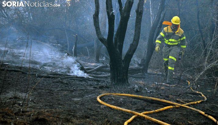 Foto 1 - La campaña de incendios muestra una disminución del 50% respecto a un año medio