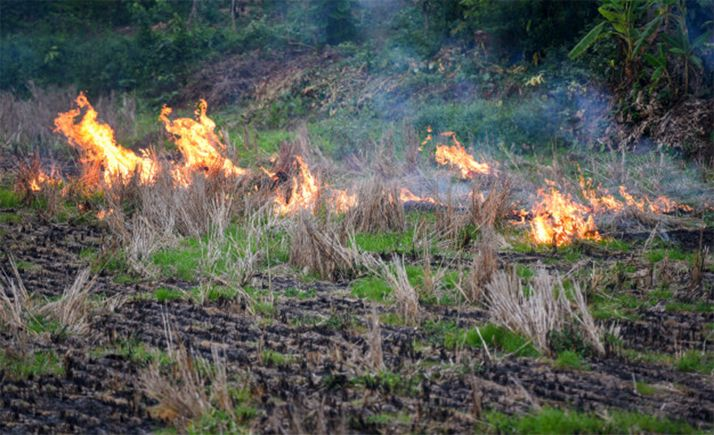 Una quema controlada de rastrojos.