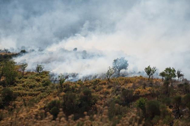 Foto 1 - La Junta declara alerta de riesgo por incendios los días 6 y 7 de agosto