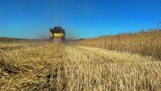 Charla sobre agricultura ecológica en Calatañazor