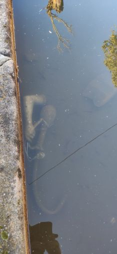 Fragmentos de la estatua, bajo el agua, en el interior de la fuente.