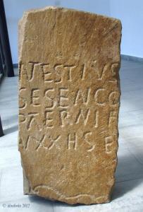 Foto 3 - Patrimonio autoriza el traslado de estelas funerarias de Tierras Altas para una exposición en Bergara: ¿Pero para cuándo un centro de interpretación?