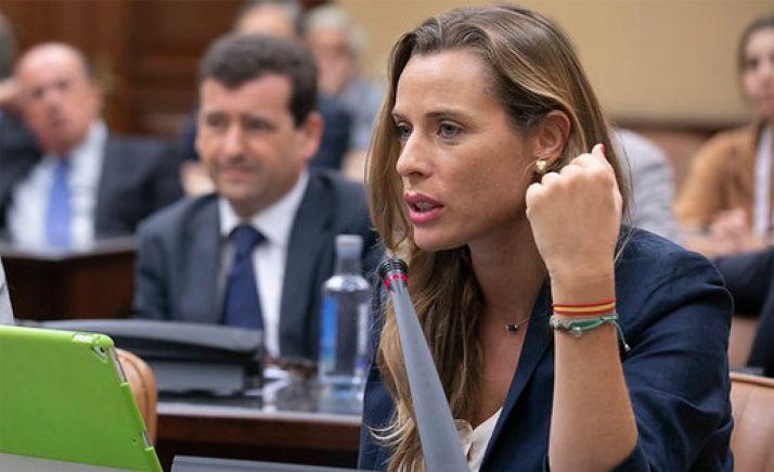Foto 2 - Vox pregunta en el Congreso sobre las infraestructuras sorianas