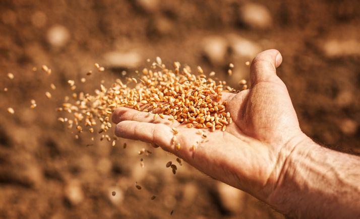 Foto 1 - 4.200 agricultores y ganaderos sorianos han solicitado el pago de la PAC para este 2020