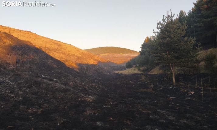 Tres incendios activos en Soria: Valtajeros, Perdices y Sarnago