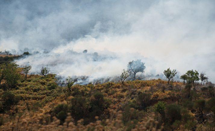 Foto 1 - Alerta de incendios forestales el lunes por riesgo meteorológico en Salamanca, Zamora y Valladolid