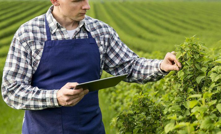 Foto 1 - La formación online potencia el uso de tecnologías innovadoras en la industria agroalimentaria de CyL