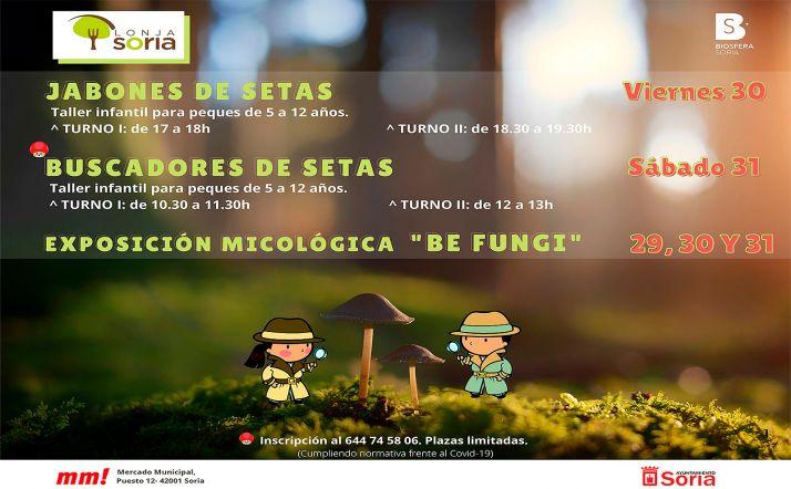 Foto 1 - Este viernes concluye el plazo para el concurso fotográfico sobre micología de la Lonja de Soria