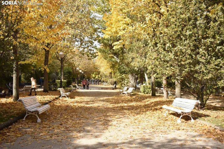 FOTOS: El otoño mejora el paseo por el pulmón de Soria