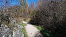 Foto 5 - Un paseo por las pasarelas del Duero en Soria, foto a foto