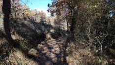 Foto 4 - Un paseo por las pasarelas del Duero en Soria, foto a foto