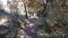 Foto 3 - Un paseo por las pasarelas del Duero en Soria, foto a foto