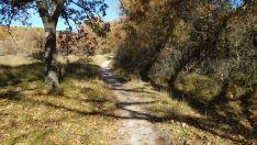 Foto 2 - Un paseo por las pasarelas del Duero en Soria, foto a foto