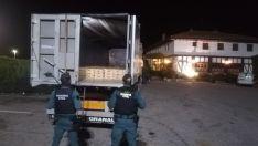 Foto 3 - Mercado negro de setas: Intervenidas 1,5 toneladas de níscalos y denunciadas 2 empresas y 7 recolectores