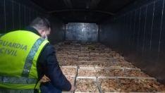 Mercado negro de setas: Intervenidas 1,5 toneladas de níscalos y denunciadas 2 empresas y 7 recolectore