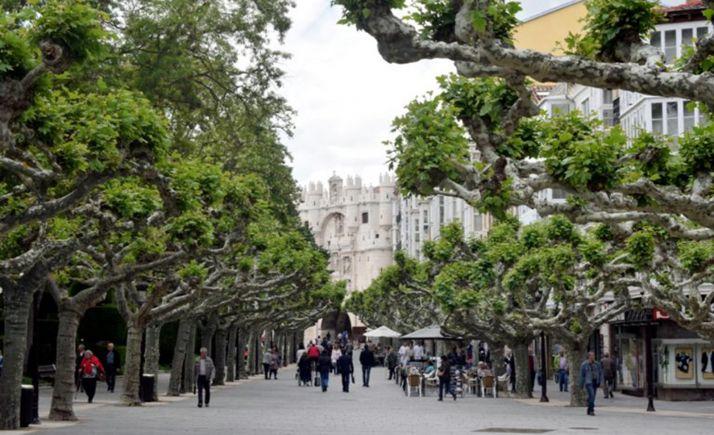 Una imagen de archivo del Paseo del Espolón en la capital burgalesa.