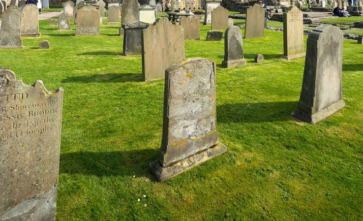 Estelas funerarias medievales en un cementerio.