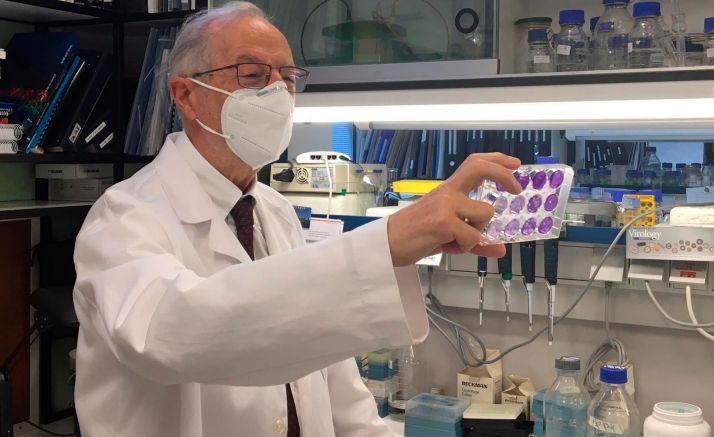 El doctor Luis Enjuanes. /CISC
