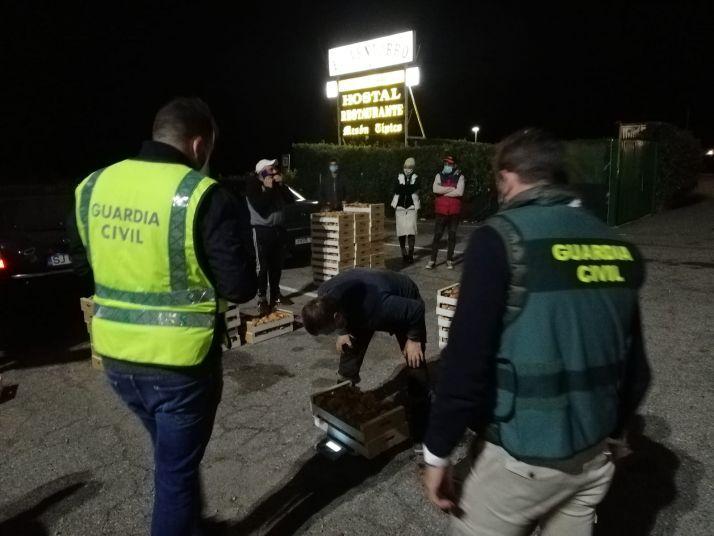 Foto 2 - Mercado negro de setas: Intervenidas 1,5 toneladas de níscalos y denunciadas 2 empresas y 7 recolectores
