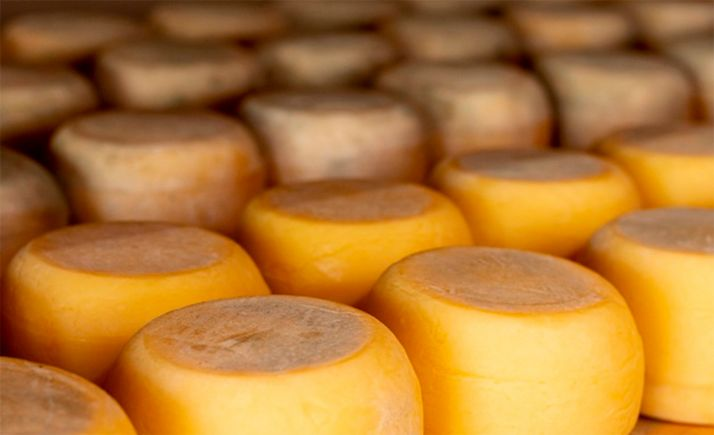 Foto 1 - Más de 70 prescriptores queseros en 'El mejor cheesemonger de España', promocionado por Tierra de Sabor