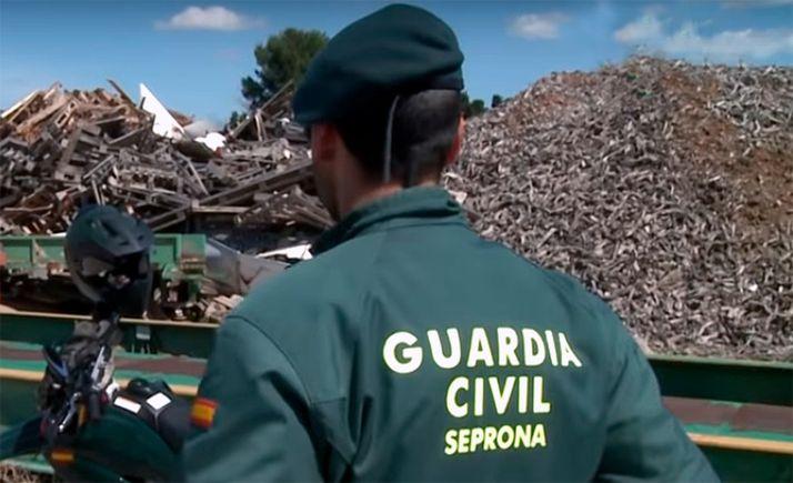 Foto 1 - La Junta pone a disposción del Seprona su base telemática para formación en protección ambiental