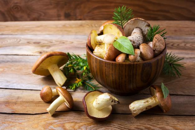 Foto 1 - Cinco tipos de setas comestibles que encontrarás en Soria