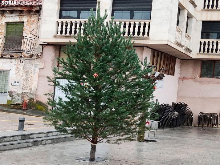Una imagen del pino colocado hoy. /SN