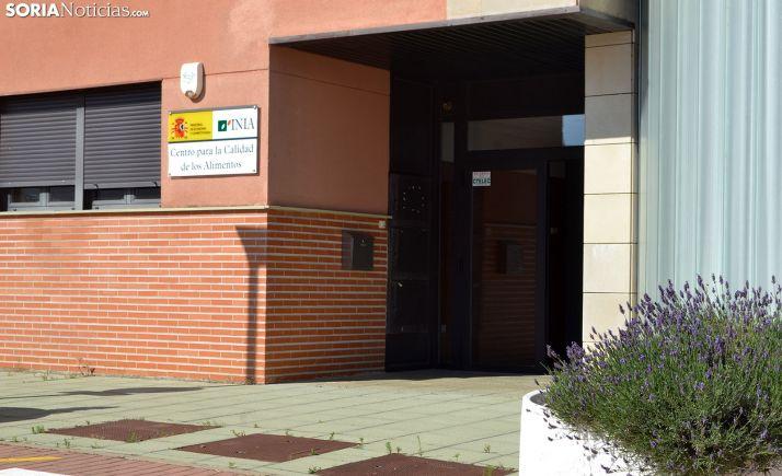 Entrada a las instalaciones del centro, ubicado en las inmediaciones del Campus. /SN