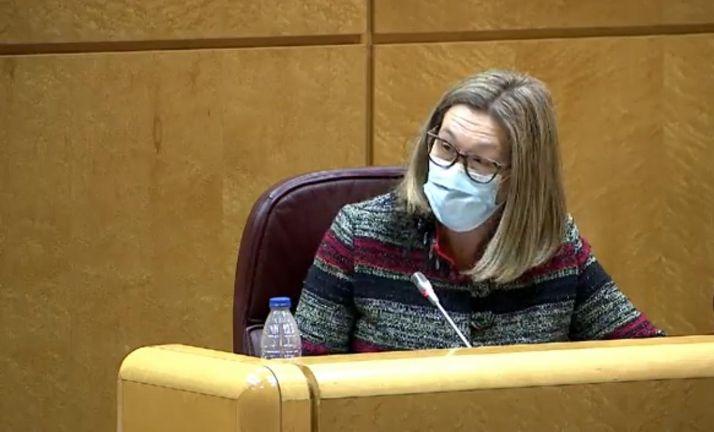 María José Heredia en su comparecencia en el Senado.